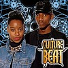 CULTURE BEAT - MR VAIN